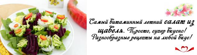 Что приготовить из щавеля? Салат из щавеля — 12 вкусных и простых рецептов, пошагово с фото