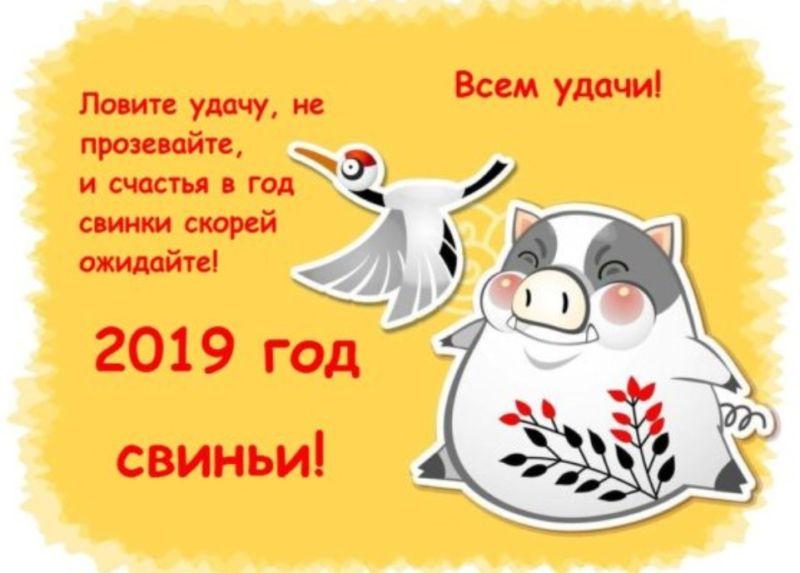Новогодние стихи для детей на 2019 год в 2019 году