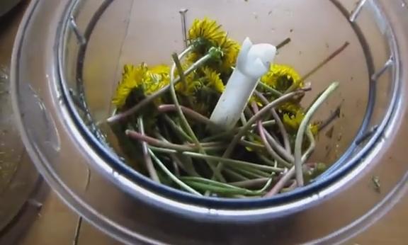 2krutim cveti