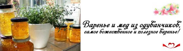 miniatura varenie iz oduvanchikov