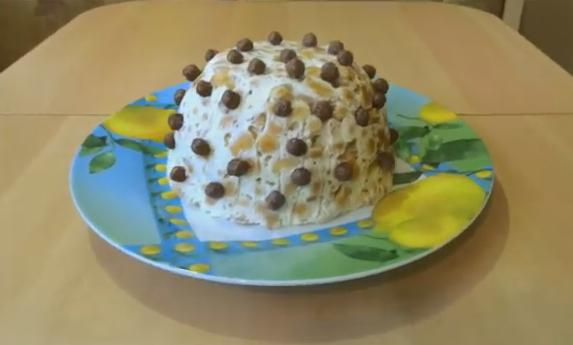 1ribki tort