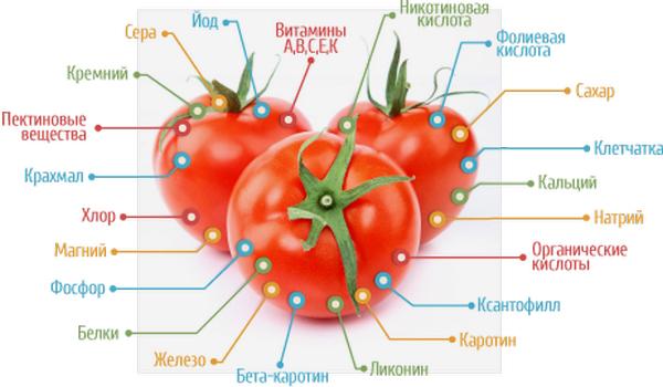 pomidor polza