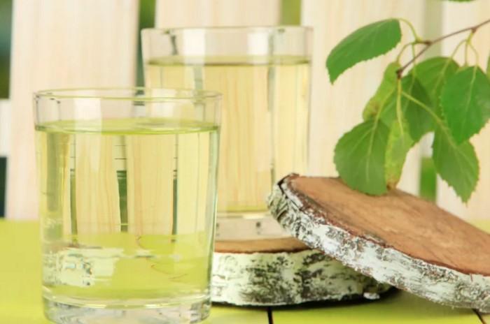 Сколько хранится березовый сок в холодильнике, в домашних условиях, без кипячения, в бутылках