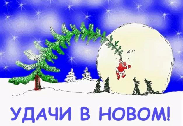 Сроки посева перца и помидор на рассаду в Подмосковье