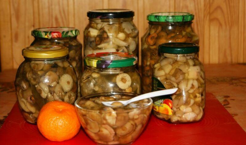 Маринованные маслята на зиму: простые и самые вкусные рецепты