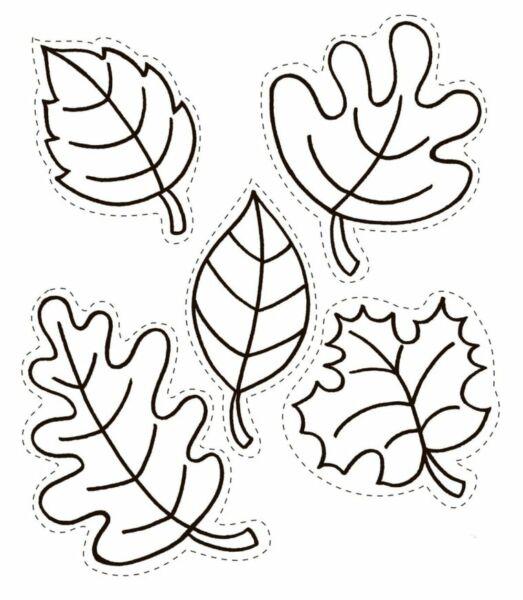 Осенние листья из бумаги: трафареты и шаблоны для ...